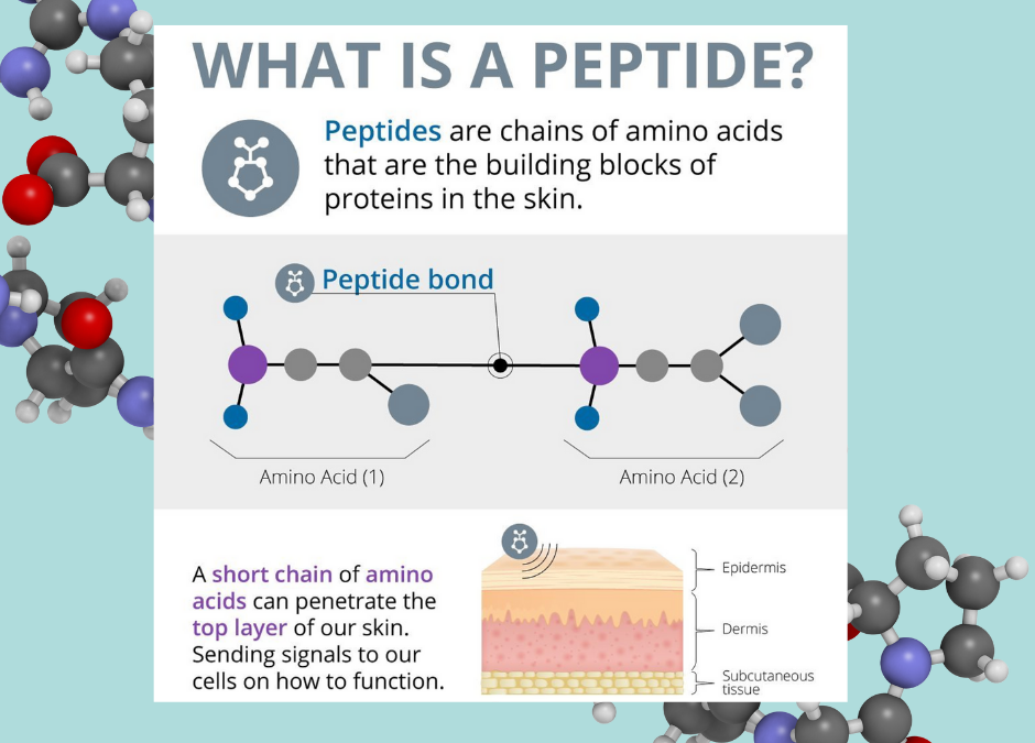Why Peptides Are The CEO Of All Skincare Ingredients?